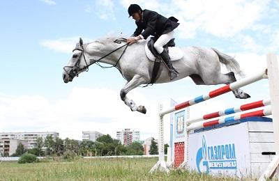 Конь на скачках