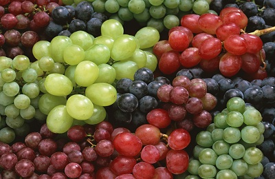 Сорта ягод