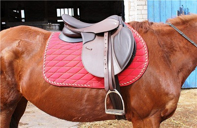 Седло на коне