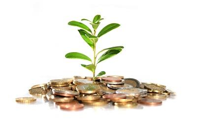 Деньги за ростки
