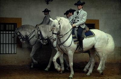 Тройка коней