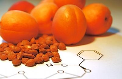 Ядро абрикоса