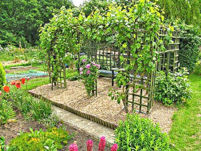Декоративная опора для винограда