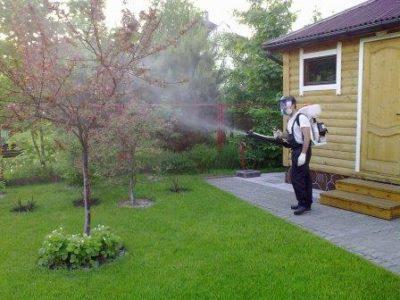 Опрыскивание вишни