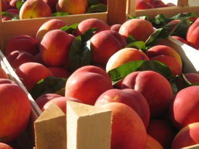 Персики в ящике