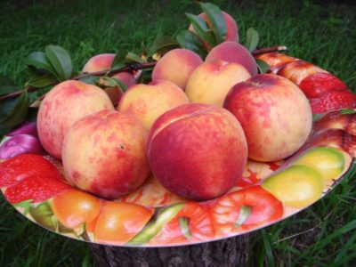 персики в тарелке