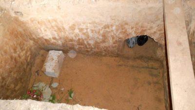 Открытая яма для кроликов