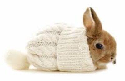 Утепление для кроликов