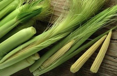 Мини кукуруза