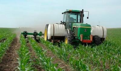 Внесение удобрений на поле с кукурузой